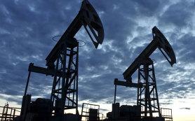 Нефть, подешевевшая накануне, сегодня прибавляет в цене