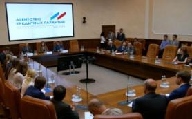 Госдума засомневалась в эффективности Агентства кредитных гарантий
