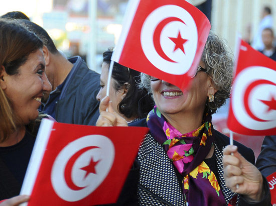 Тунис просится в «Таможенный союз» и открывает для РФ «ворота в Северную Африку»