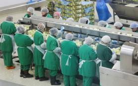 Минтруд: в будущем пенсий лишится большинство работающих пенсионеров