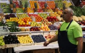 Россельхознадзор разрешил возобновить поставки фруктов из Молдавии в Россию