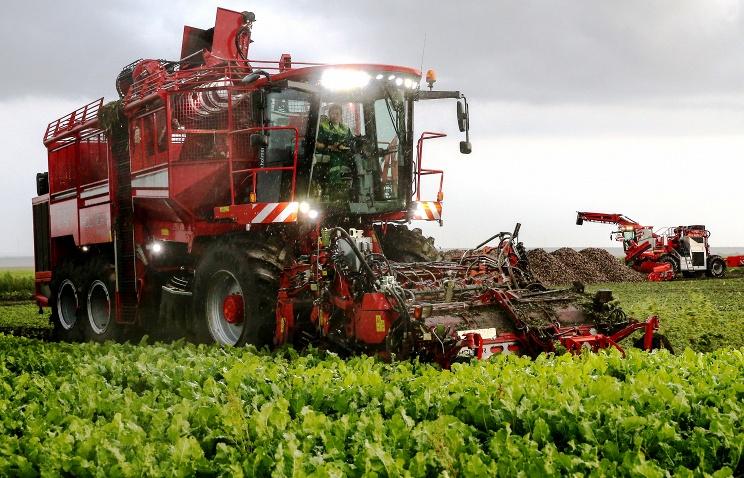 Объем производства сельхозпродукции в РФ вырос на 40%