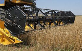 Правительство РФ решило обнулить экспортную пошлину на пшеницу на два года