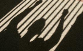 Киберпреступления могут приравнять к краже