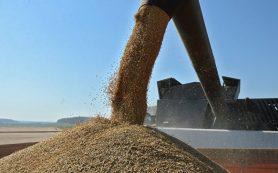 Правительство рассмотрит субсидирование инвесткредитов АПК