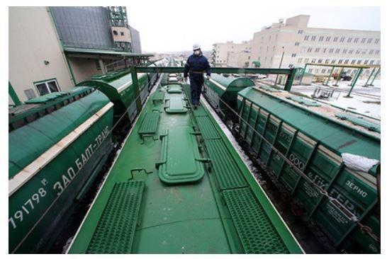 РФ оказалась неспособной справиться с огромными урожаями