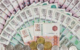 Минфин в мае закупит рекордный объем валюты