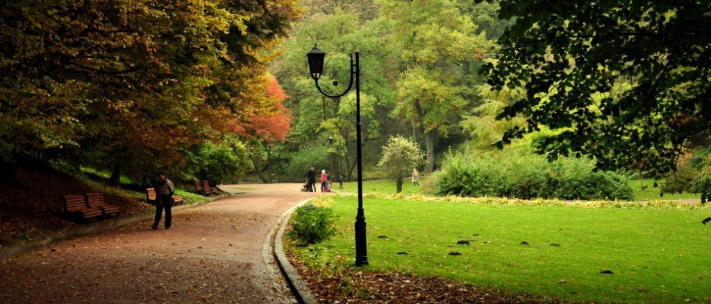 Чем сможет удивить Стрийский парк в городе Львов