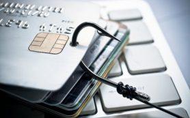 Как противостоять мошенничеству в Интернете?