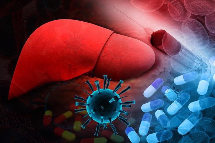 Гепатит С — основные моменты
