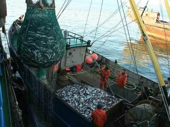 Рыболовецкая отрасль России может оказаться на безрыбье