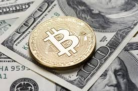 Криптовалюта: что нужно знать?