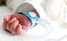 Максимальный размер пособия по беременности и родам вырастет