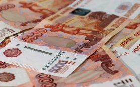 СЗПК объявлены правительством защитой бюджета от непредвиденных расходов