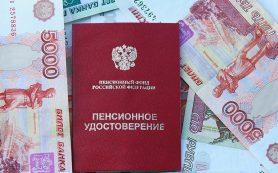 Глава ПФР сообщил о снижении числа пенсионеров после реформы