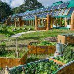 3 практических совета для эко хозяйства