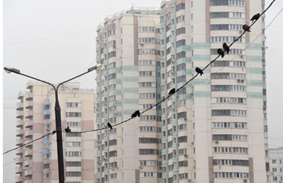 России предрекли падение цен на жилье