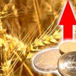 Мосбиржа в 2020 году увеличила прибыль на 24,6%