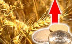 Минсельхоз предложил предельные цены на зерно для проведения закупочных интервенций