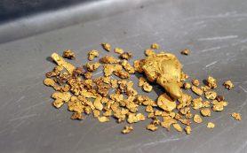 Россия может обогнать Китай по добыче золота