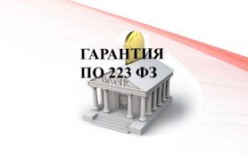 Банковская гарантия 223 ФЗ
