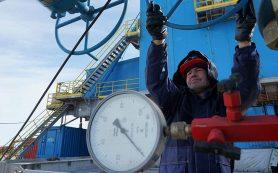 Путин заявил о выгоде для стран с долгосрочными контрактами на газ из РФ