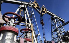 Правительство запустило систему противодействия рискам ускорения мировых цен